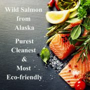 salmon wild caught