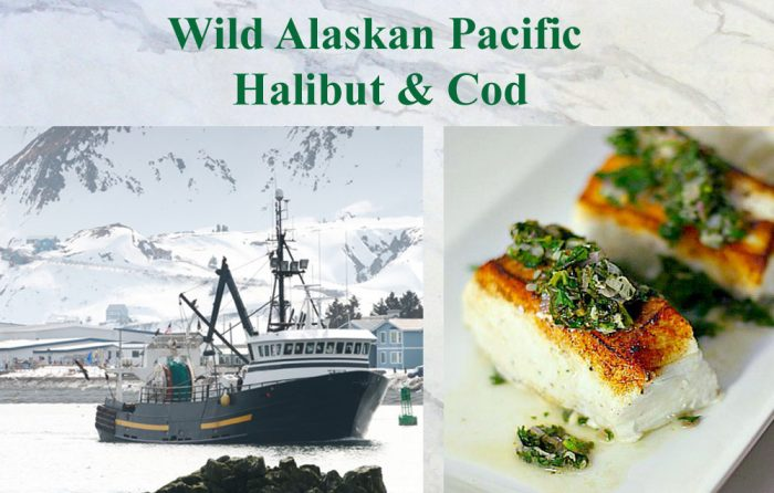 wild caught halibut