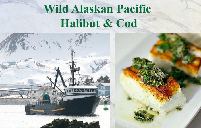 halibut-and-cod