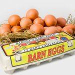 Barney eggs New Zealand