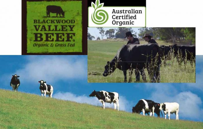 diced beef singapore - blackwood valley farm