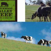 blackwood valley