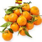 Organic Mandarine Oranges