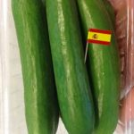 Organic Spanish Cucumber