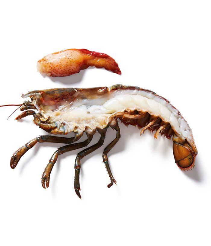 Lobster Split Small Chix